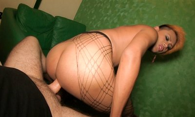 bareback, big dick, fishnet lingerie, pantyhose, tao,